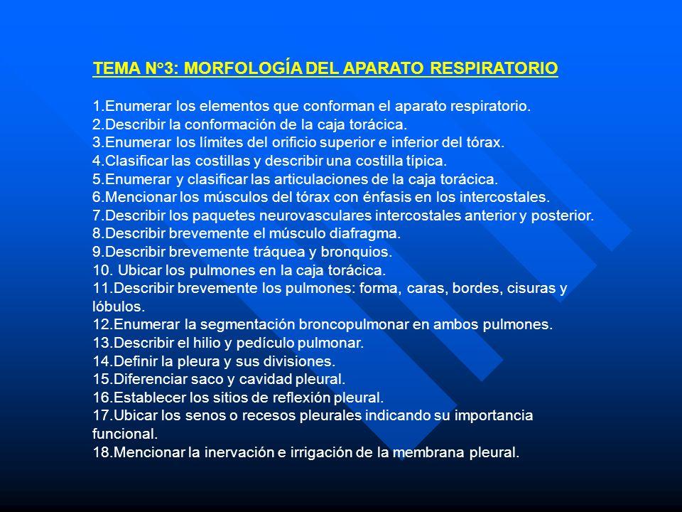 TEMA N°3: MORFOLOGÍA DEL APARATO RESPIRATORIO 1.Enumerar los elementos que conforman el aparato respiratorio. 2.Describir la conformación de la caja t