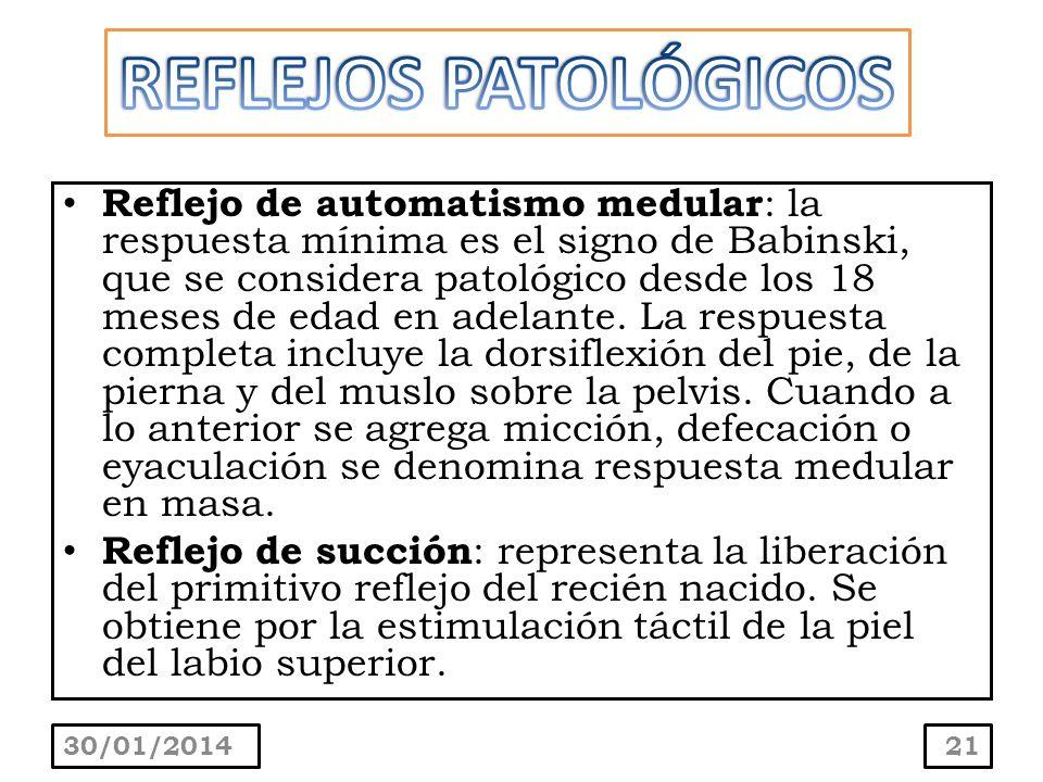 Reflejo de automatismo medular : la respuesta mínima es el signo de Babinski, que se considera patológico desde los 18 meses de edad en adelante. La r