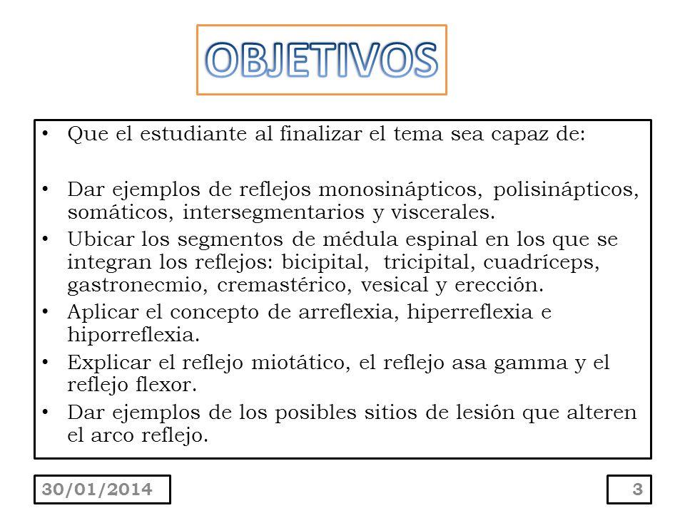 Reflejo supinador : la percusión de la apófisis estiloides con el brazo en semiflexión produce flexión del antebrazo y supinación con ligera flexión de los dedos.
