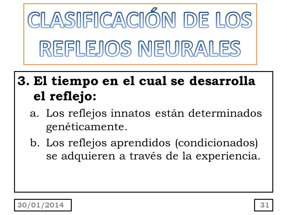 3.El tiempo en el cual se desarrolla el reflejo: a.Los reflejos innatos están determinados genéticamente. b.Los reflejos aprendidos (condicionados) se
