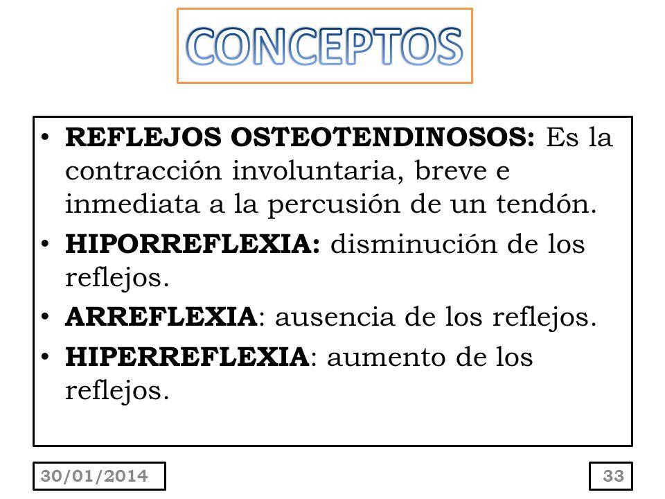 REFLEJOS OSTEOTENDINOSOS: Es la contracción involuntaria, breve e inmediata a la percusión de un tendón. HIPORREFLEXIA: disminución de los reflejos. A