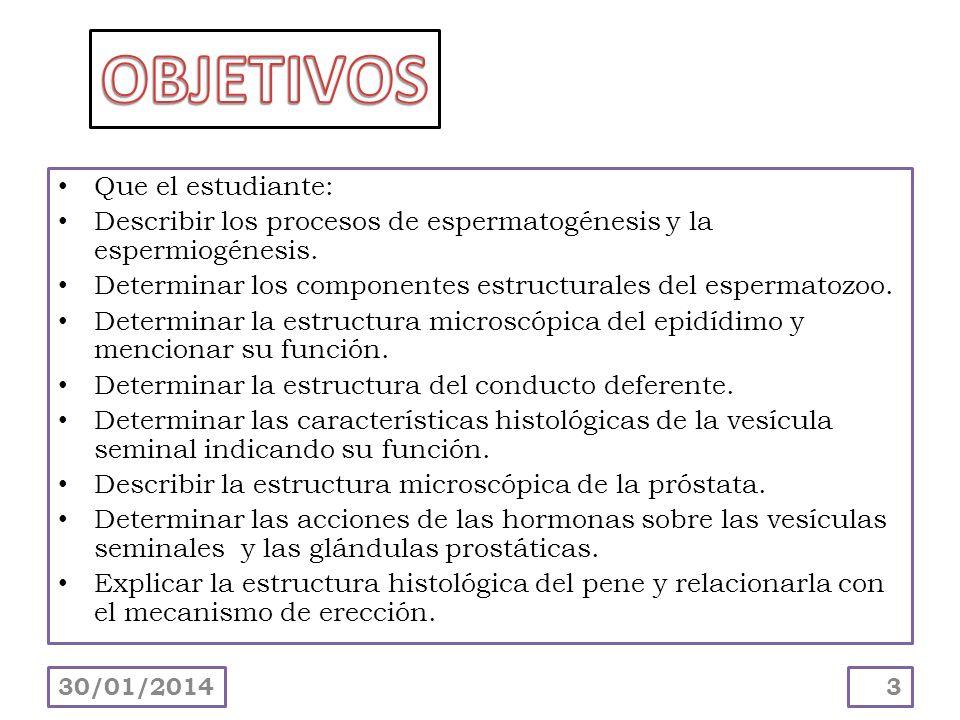 Que el estudiante: Describir los procesos de espermatogénesis y la espermiogénesis. Determinar los componentes estructurales del espermatozoo. Determi