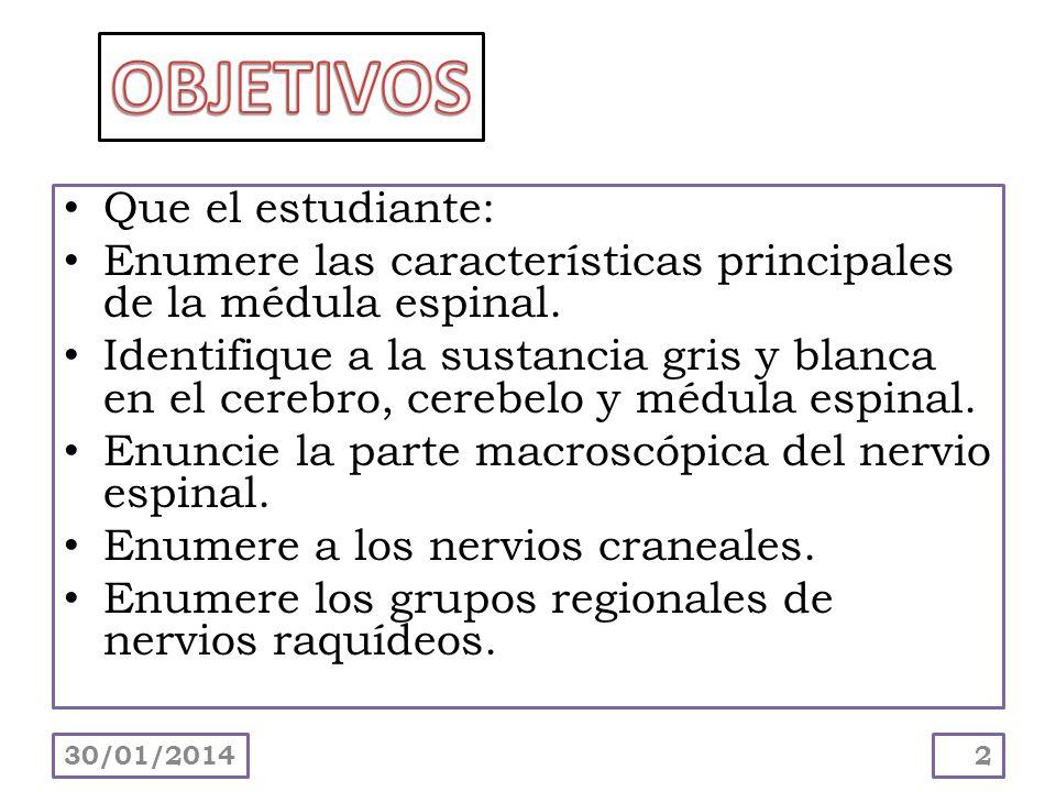 Que el estudiante: Enumere las características principales de la médula espinal. Identifique a la sustancia gris y blanca en el cerebro, cerebelo y mé