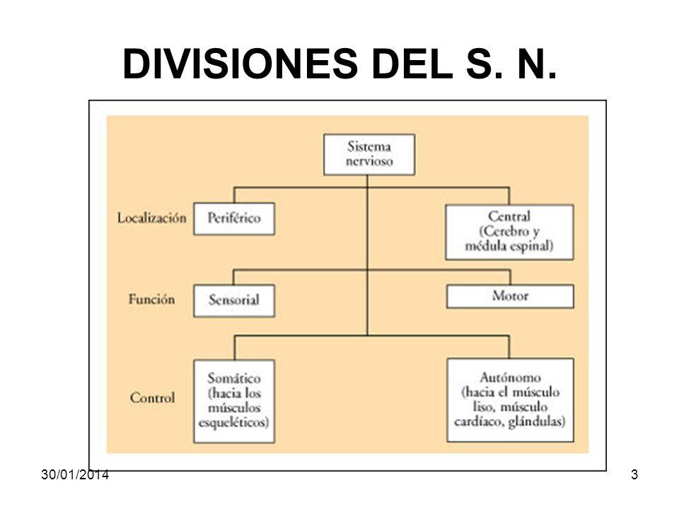 DIVISIONES DEL S. N. 30/01/20143