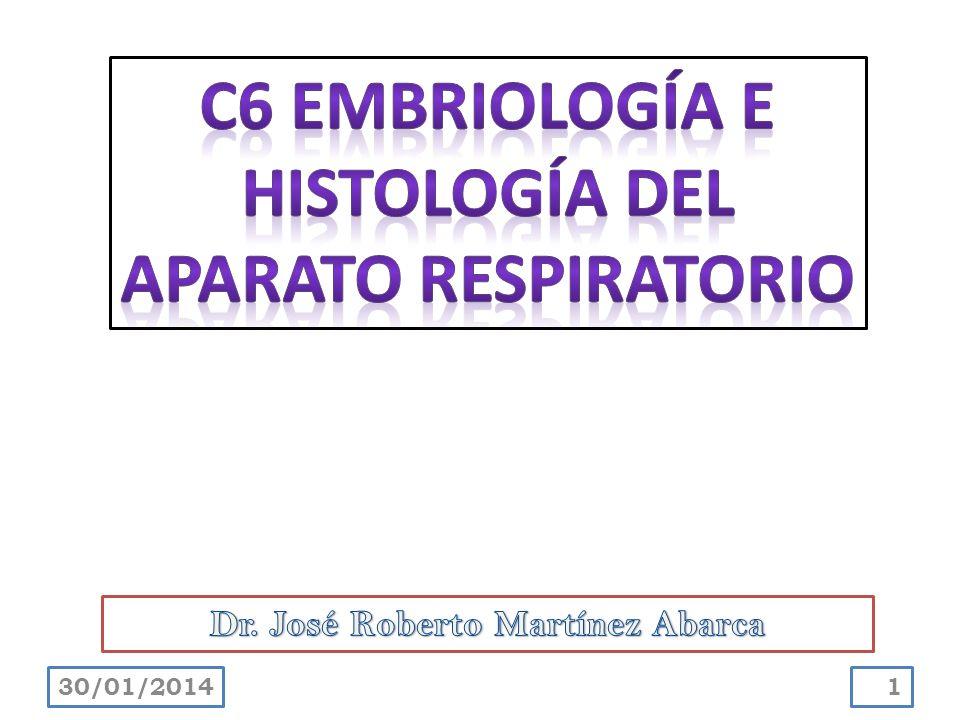 Describir el desarrollo del aparato respiratorio.