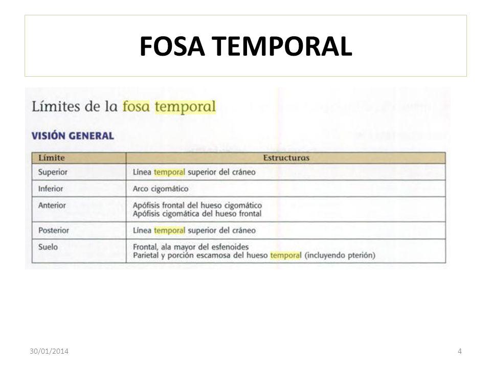 FOSA TEMPORAL 30/01/20145