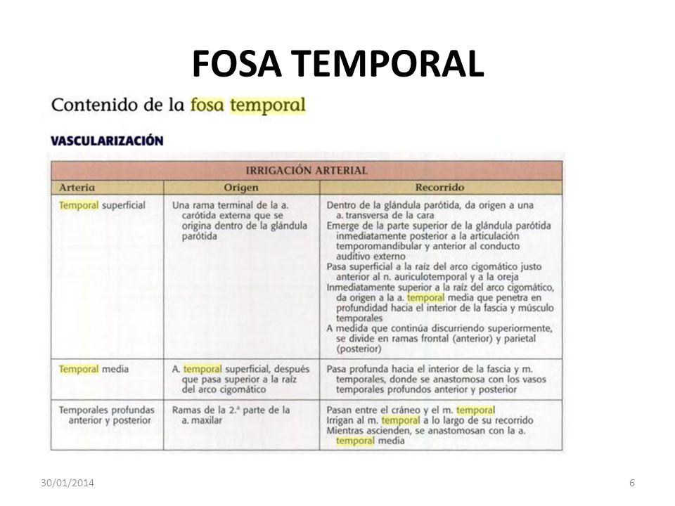 FOSA TEMPORAL 30/01/20146
