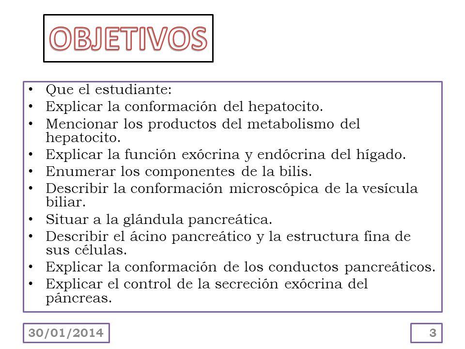 Que el estudiante: Explicar la conformación del hepatocito. Mencionar los productos del metabolismo del hepatocito. Explicar la función exócrina y end