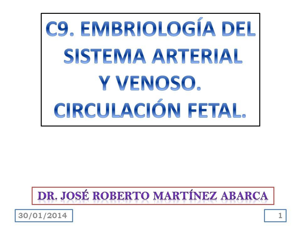 Se forma durante una serie de cambios en las venas primitivas del tronco que ocurren a medida que la sangre que retorna de la parte caudal del embrión se desvía del lado izquierdo al derecho del cuerpo.