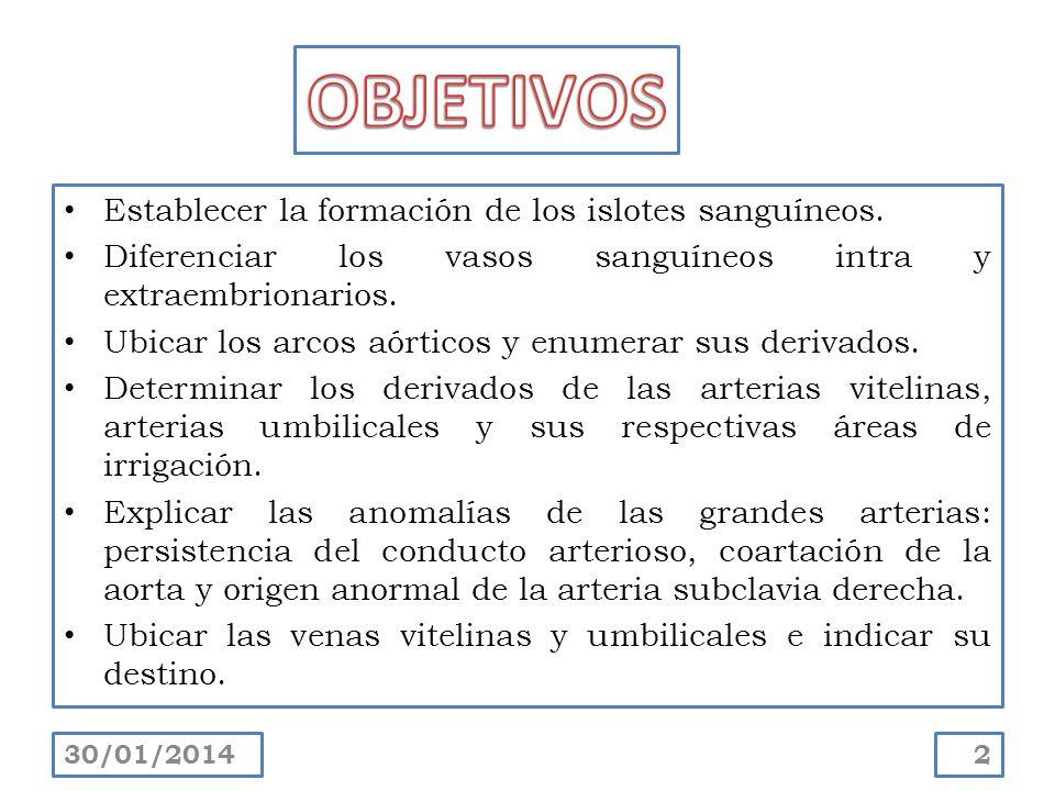 Explicar el sistema de venas cardinales: subcardinales, y supracardinales e indicar su destino.