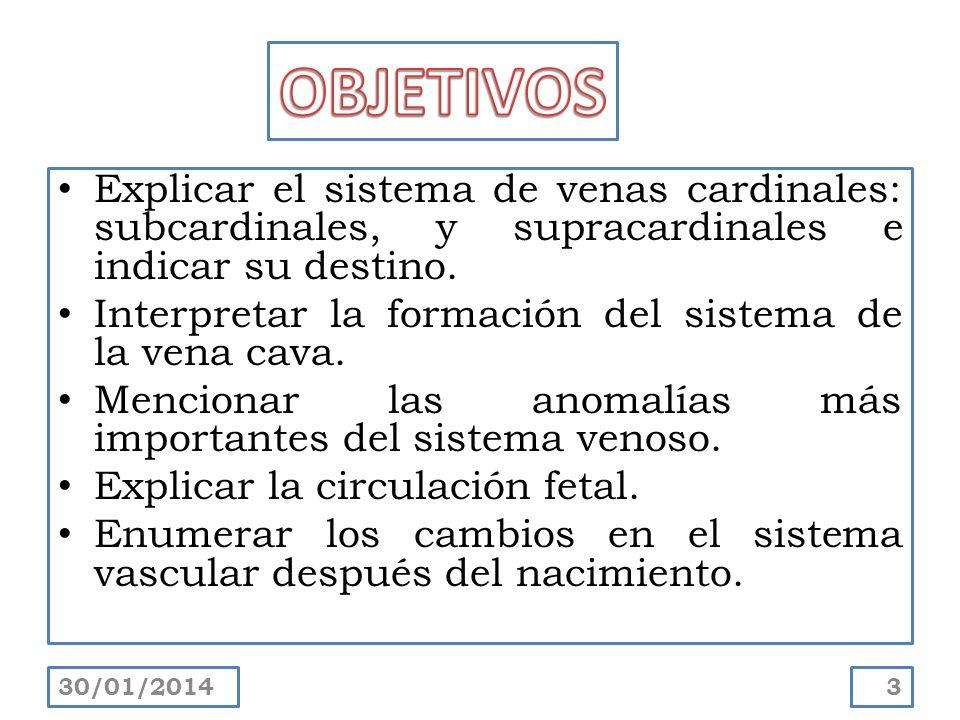 Explicar el sistema de venas cardinales: subcardinales, y supracardinales e indicar su destino. Interpretar la formación del sistema de la vena cava.