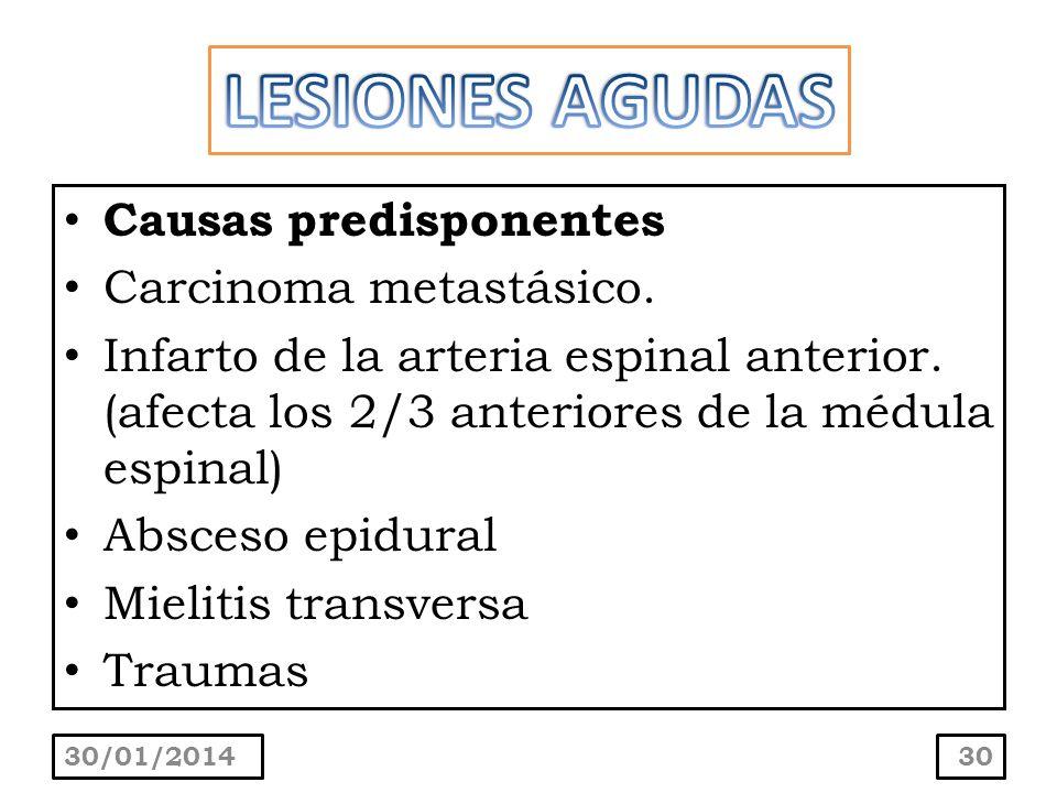 Causas predisponentes Carcinoma metastásico. Infarto de la arteria espinal anterior. (afecta los 2/3 anteriores de la médula espinal) Absceso epidural