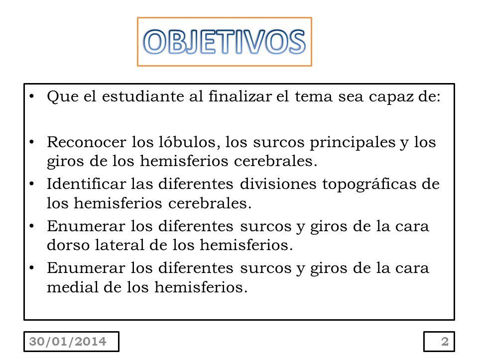 Que el estudiante al finalizar el tema sea capaz de: Reconocer los lóbulos, los surcos principales y los giros de los hemisferios cerebrales. Identifi