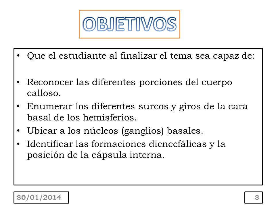 Que el estudiante al finalizar el tema sea capaz de: Reconocer las diferentes porciones del cuerpo calloso. Enumerar los diferentes surcos y giros de
