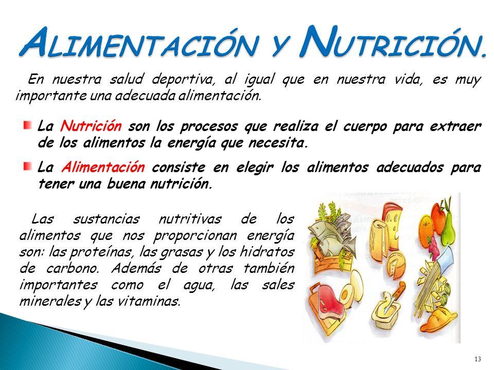 13 En nuestra salud deportiva, al igual que en nuestra vida, es muy importante una adecuada alimentación. La Nutrición son los procesos que realiza el