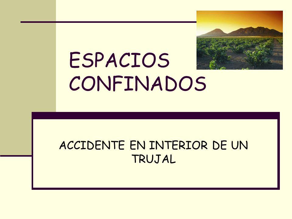 ÍNDICE Definición espacios confinados Descripción del accidente Características del recinto Causas/Análisis del accidente Medidas preventivas