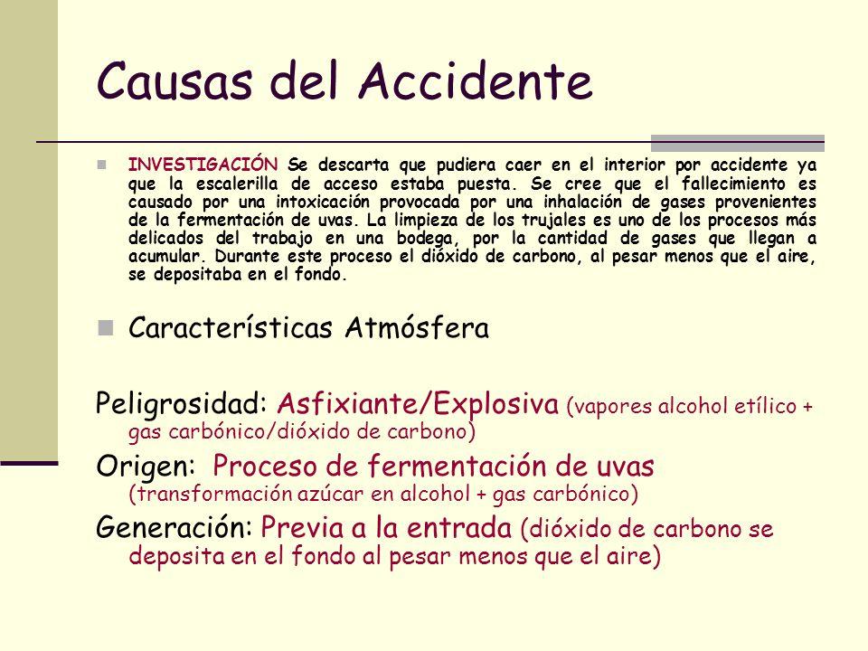 Causas del Accidente INVESTIGACIÓN Se descarta que pudiera caer en el interior por accidente ya que la escalerilla de acceso estaba puesta. Se cree qu