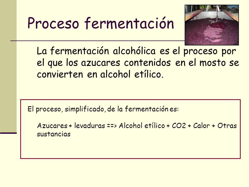 Proceso fermentación La fermentación alcohólica es el proceso por el que los azucares contenidos en el mosto se convierten en alcohol etílico. El proc