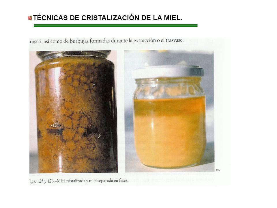 TÉCNICAS DE CRISTALIZACIÓN DE LA MIEL.. Los tejidos vegetales pueden ser: