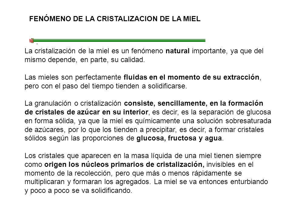 FENÓMENO DE LA CRISTALIZACION DE LA MIEL. La cristalización de la miel es un fenómeno natural importante, ya que del mismo depende, en parte, su calid