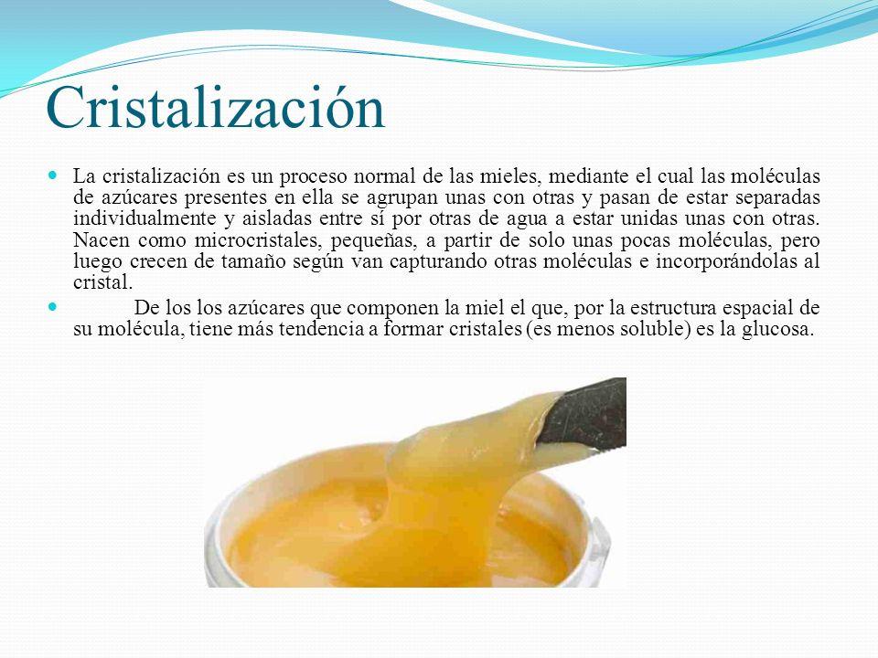 Cristalización La cristalización es un proceso normal de las mieles, mediante el cual las moléculas de azúcares presentes en ella se agrupan unas con