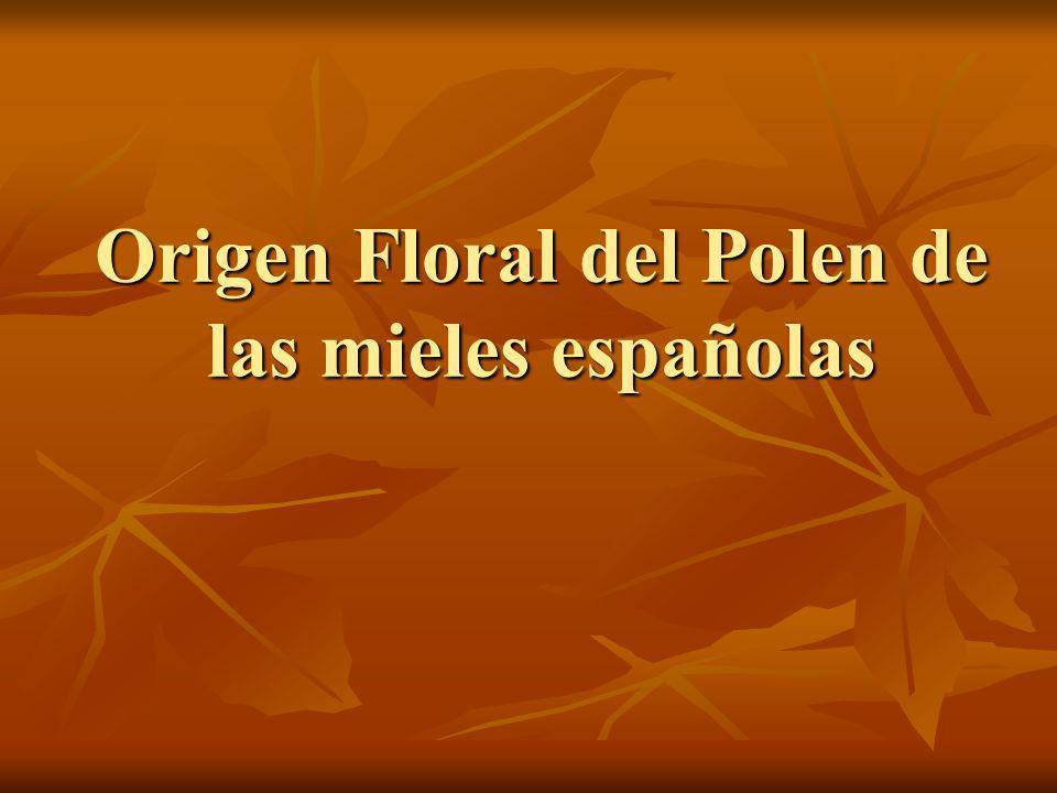 Origen Floral del Polen de las mieles españolas