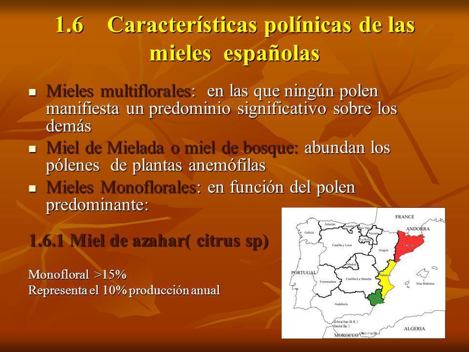 1.6 Características polínicas de las mieles españolas Mieles multiflorales: en las que ningún polen manifiesta un predominio significativo sobre los d