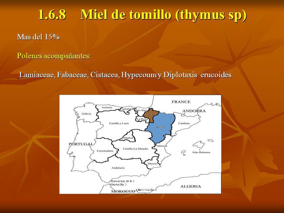 1.6.8 Miel de tomillo (thymus sp) Mas del 15% Polenes acompañantes: Lamiaceae, Fabaceae, Cistacea, Hypecoum y Diplotaxis erucoides Lamiaceae, Fabaceae