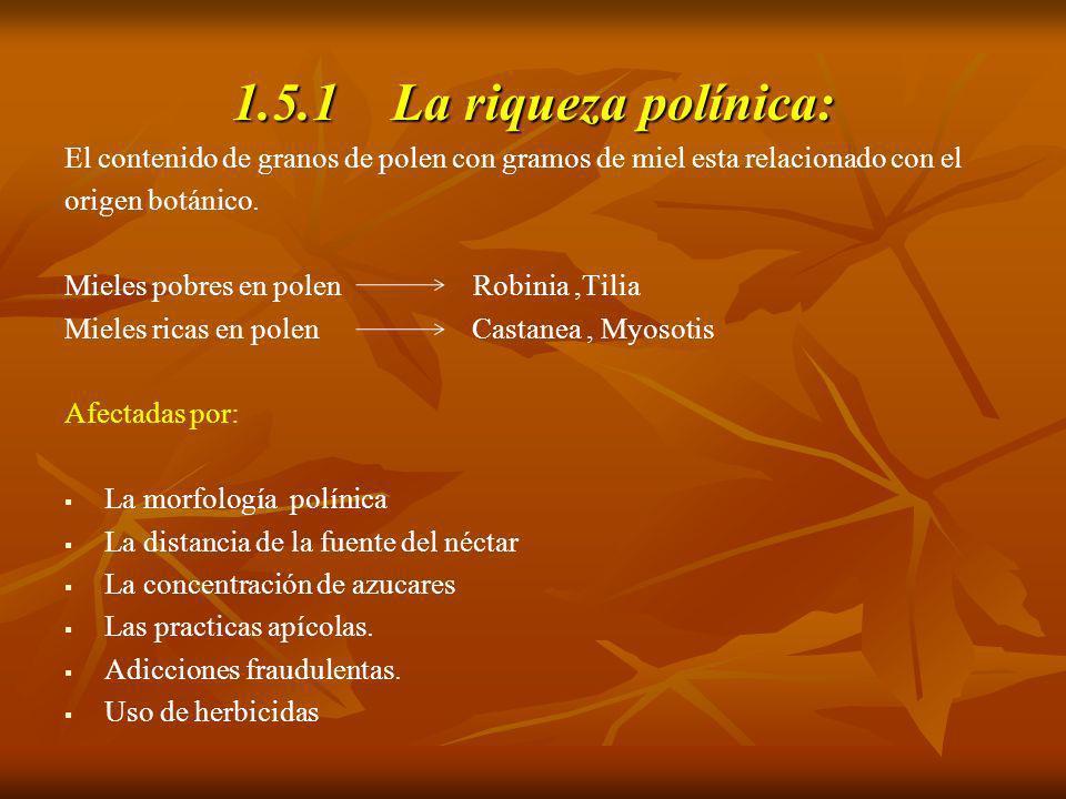 1.5.1 La riqueza polínica: El contenido de granos de polen con gramos de miel esta relacionado con el origen botánico. Mieles pobres en polen Robinia,