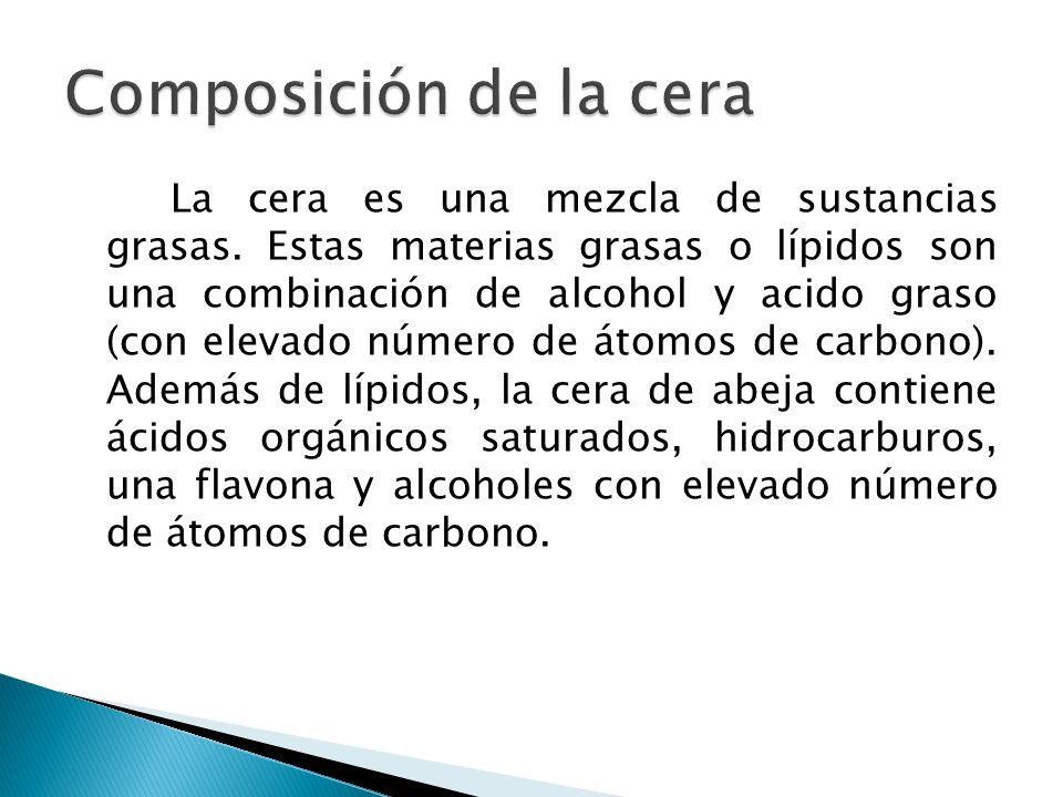 La cera es una mezcla de sustancias grasas. Estas materias grasas o lípidos son una combinación de alcohol y acido graso (con elevado número de átomos