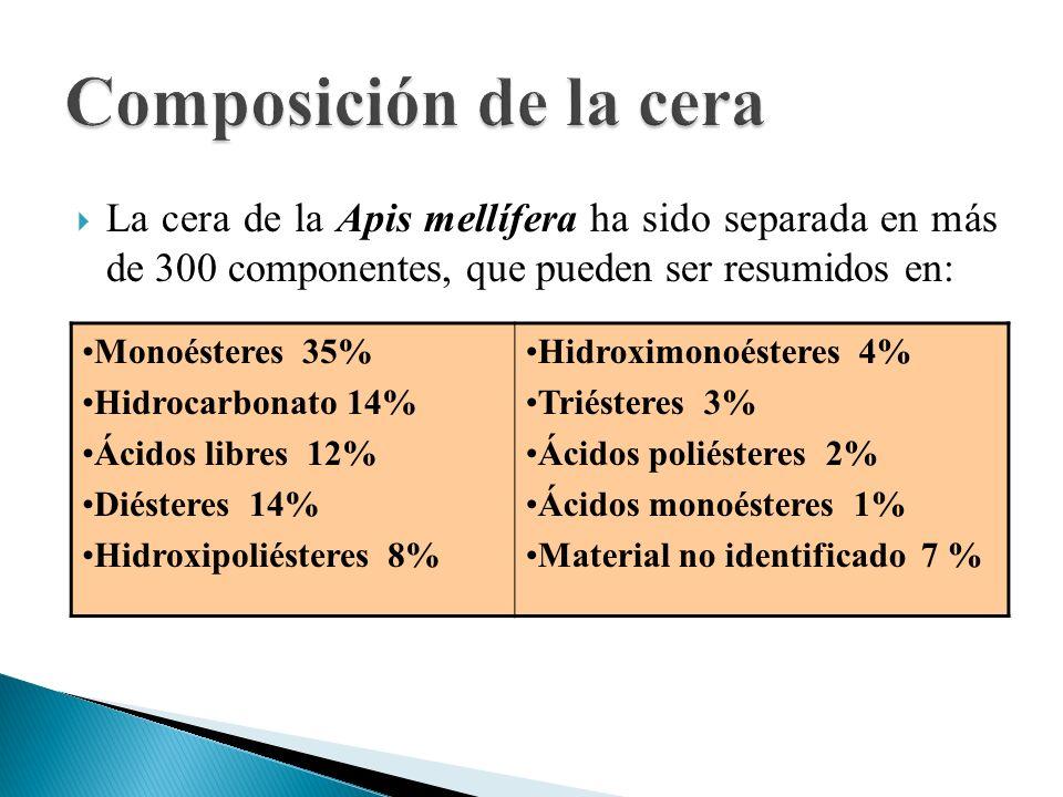 La cera de la Apis mellífera ha sido separada en más de 300 componentes, que pueden ser resumidos en: Monoésteres 35% Hidrocarbonato 14% Ácidos libres
