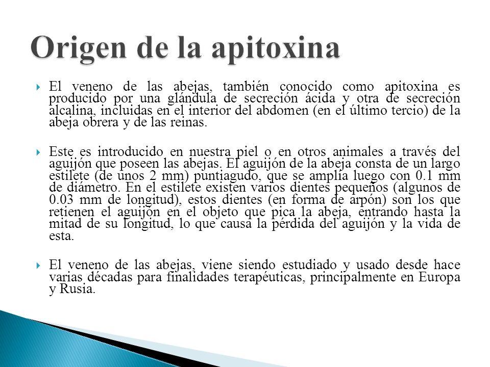 El veneno de las abejas, también conocido como apitoxina es producido por una glándula de secreción ácida y otra de secreción alcalina, incluidas en e