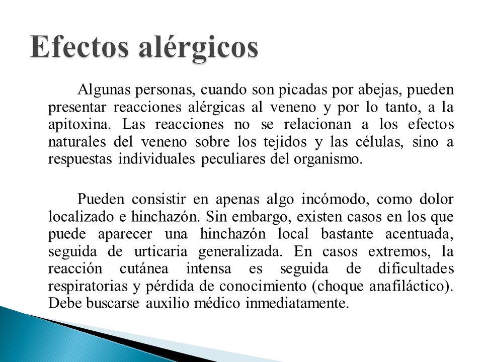 Algunas personas, cuando son picadas por abejas, pueden presentar reacciones alérgicas al veneno y por lo tanto, a la apitoxina. Las reacciones no se