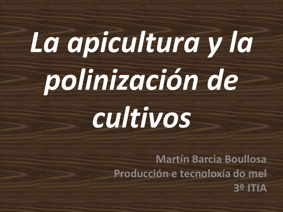 Si la abeja desapareciese de la superficie del globo, al hombre solo le quedarían cuatro años de vida: Sin abejas, no hay polinización, ni hierba, ni animales, ni hombres.