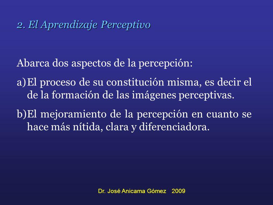 2. El Aprendizaje Perceptivo Abarca dos aspectos de la percepción: a)El proceso de su constitución misma, es decir el de la formación de las imágenes