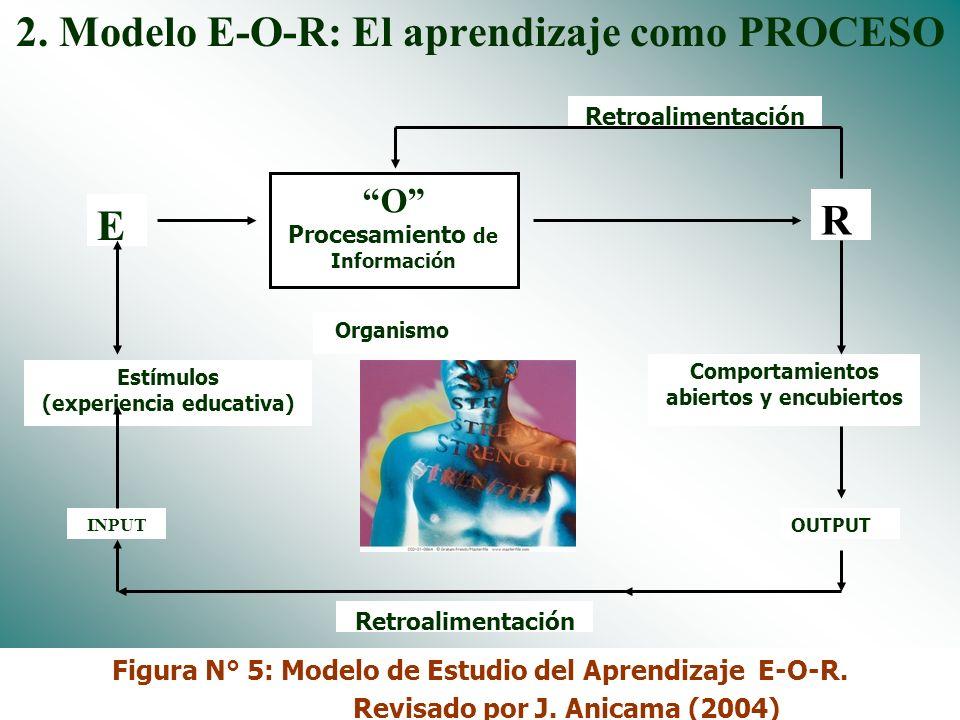 Dr. José Anicama 200910 Aprendizaje como PRODUCTO (E - R). Concepto. EL APRENDIZAJE ES EL CAMBIO RELATIVAMENTE ESTABLE EN EL COMPORTAMIENTO DE LOS EST