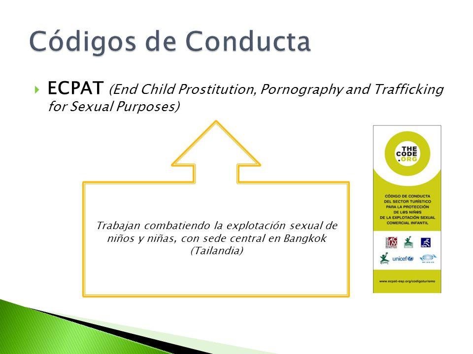 ECPAT (End Child Prostitution, Pornography and Trafficking for Sexual Purposes) Trabajan combatiendo la explotación sexual de niños y niñas, con sede