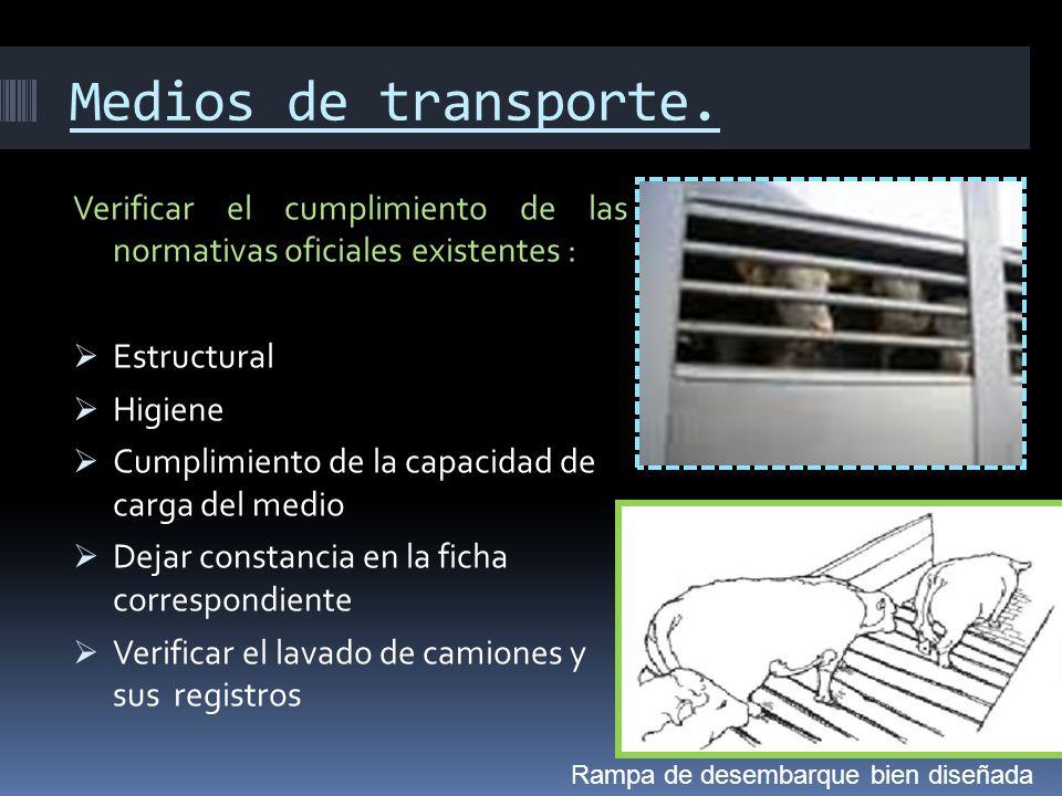Medios de transporte.