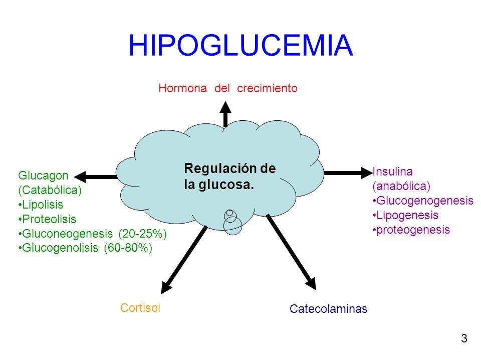 HIPOGLUCEMIA El mantenimiento de la concentración de la glucosa en el plasma dentro de un límite estrecho es escencial para la salud.
