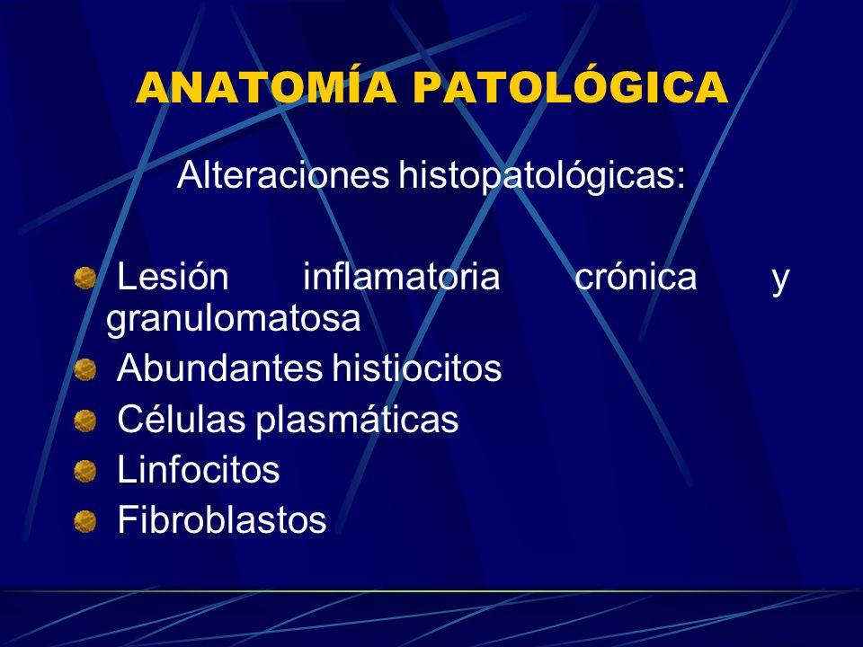 ANATOMÍA PATOLÓGICA Alteraciones histopatológicas: Lesión inflamatoria crónica y granulomatosa Abundantes histiocitos Células plasmáticas Linfocitos F