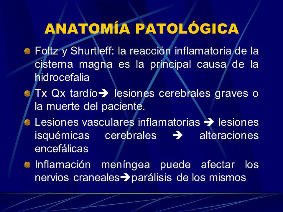 ANATOMÍA PATOLÓGICA Foltz y Shurtleff: la reacción inflamatoria de la cisterna magna es la principal causa de la hidrocefalia Tx Qx tardío lesiones ce