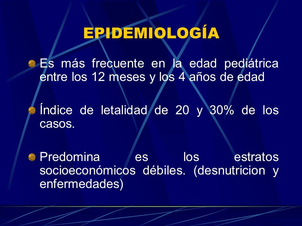 EPIDEMIOLOGÍA Es más frecuente en la edad pediátrica entre los 12 meses y los 4 años de edad Índice de letalidad de 20 y 30% de los casos. Predomina e