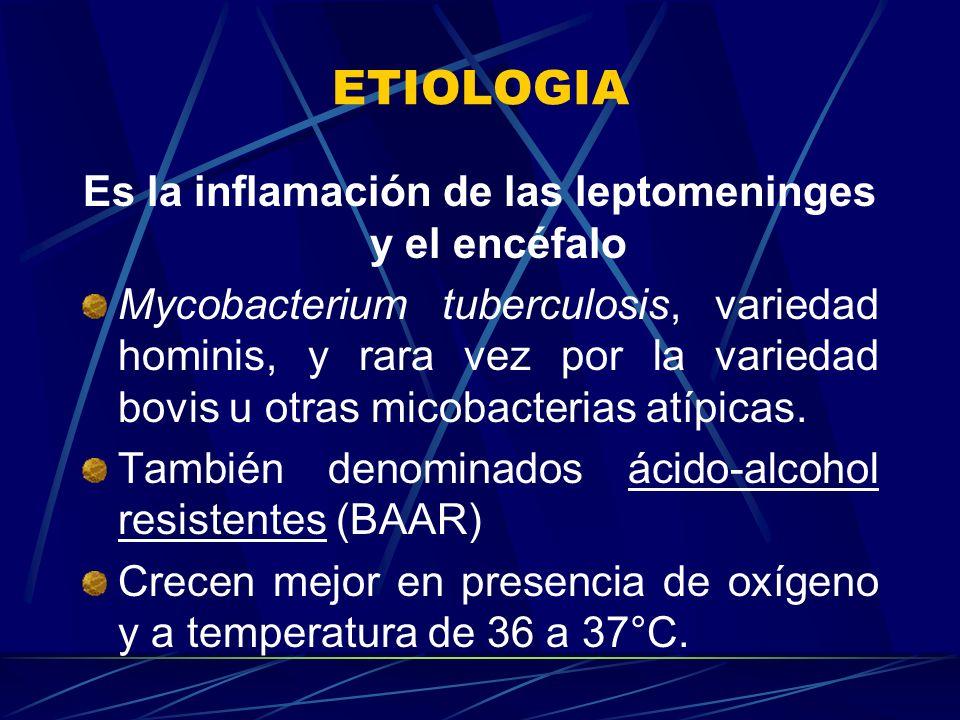 ETIOLOGIA Es la inflamación de las leptomeninges y el encéfalo Mycobacterium tuberculosis, variedad hominis, y rara vez por la variedad bovis u otras