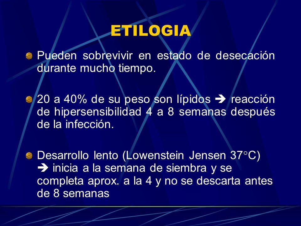 ETILOGIA Pueden sobrevivir en estado de desecación durante mucho tiempo. 20 a 40% de su peso son lípidos reacción de hipersensibilidad 4 a 8 semanas d