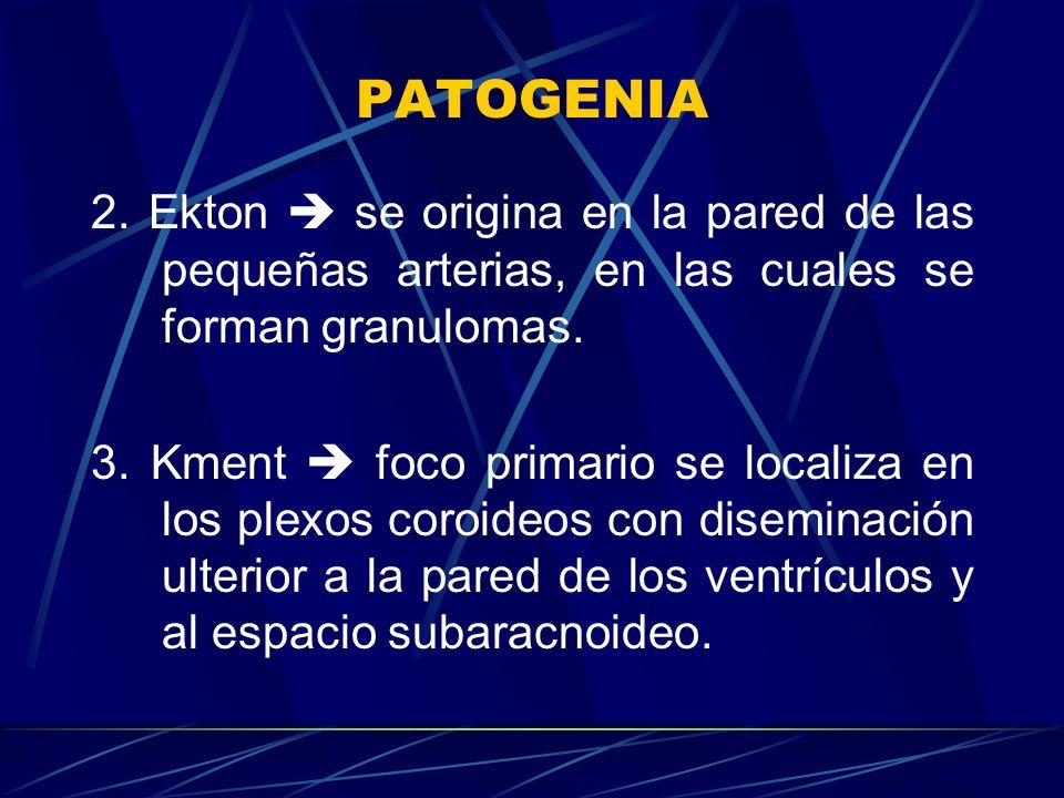 PATOGENIA 2. Ekton se origina en la pared de las pequeñas arterias, en las cuales se forman granulomas. 3. Kment foco primario se localiza en los plex
