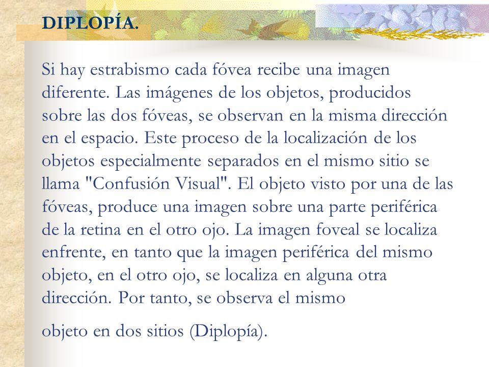 DIPLOPÍA. Si hay estrabismo cada fóvea recibe una imagen diferente. Las imágenes de los objetos, producidos sobre las dos fóveas, se observan en la mi
