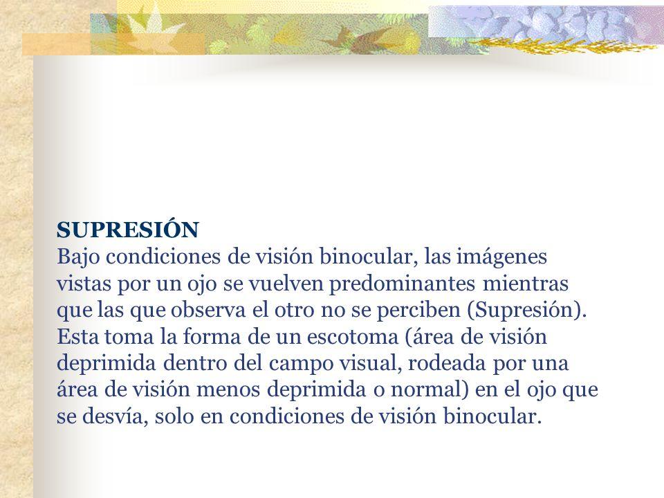 SUPRESIÓN Bajo condiciones de visión binocular, las imágenes vistas por un ojo se vuelven predominantes mientras que las que observa el otro no se per