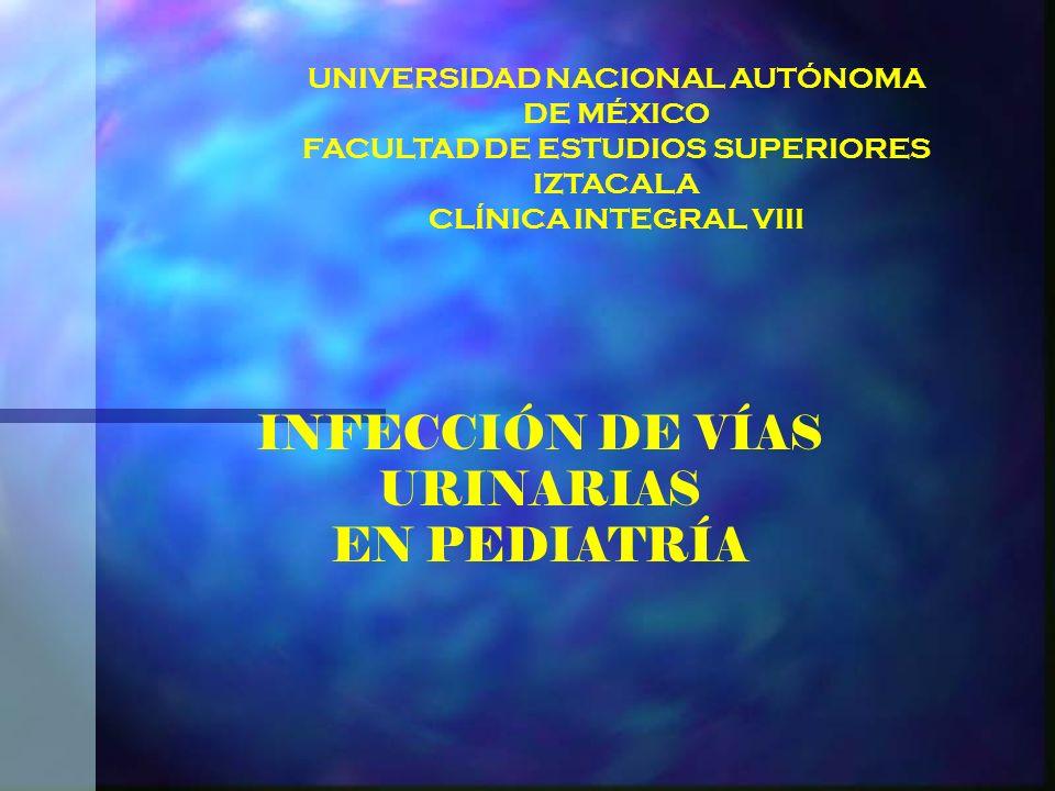 DEFINICIÓN Es toda infección bacteriana de los tejidos que conforman las estructuras urinarias a cualquier nivel, sobrepasando la capacidad invasiva del individuo afectado.