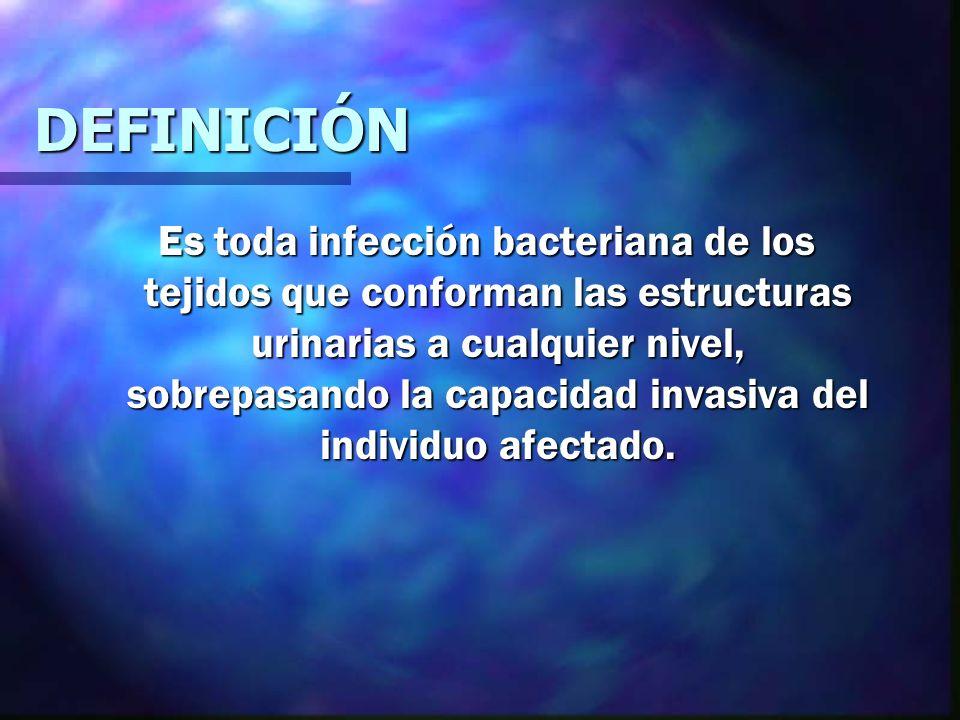 INTRODUCCIÓN VIAS URINARIAS INTRODUCCIÓN VIAS URINARIAS Son los componentes anatómicos que constituyen el aparato urinario desde la formación, viaje, almacén y expulsión de la orina.