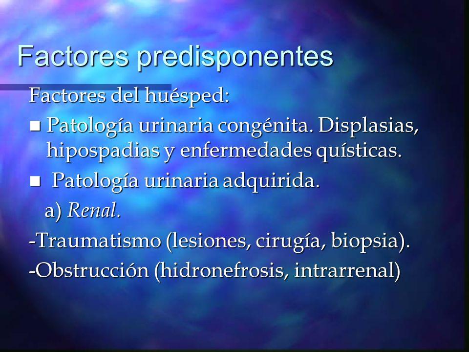 Factores predisponentes - Metabólica (acidosis tubular, nefropatía hipokalémica, nefrocalcinosis) -Tóxica (nefropatía intersticial secundaria a drogas).